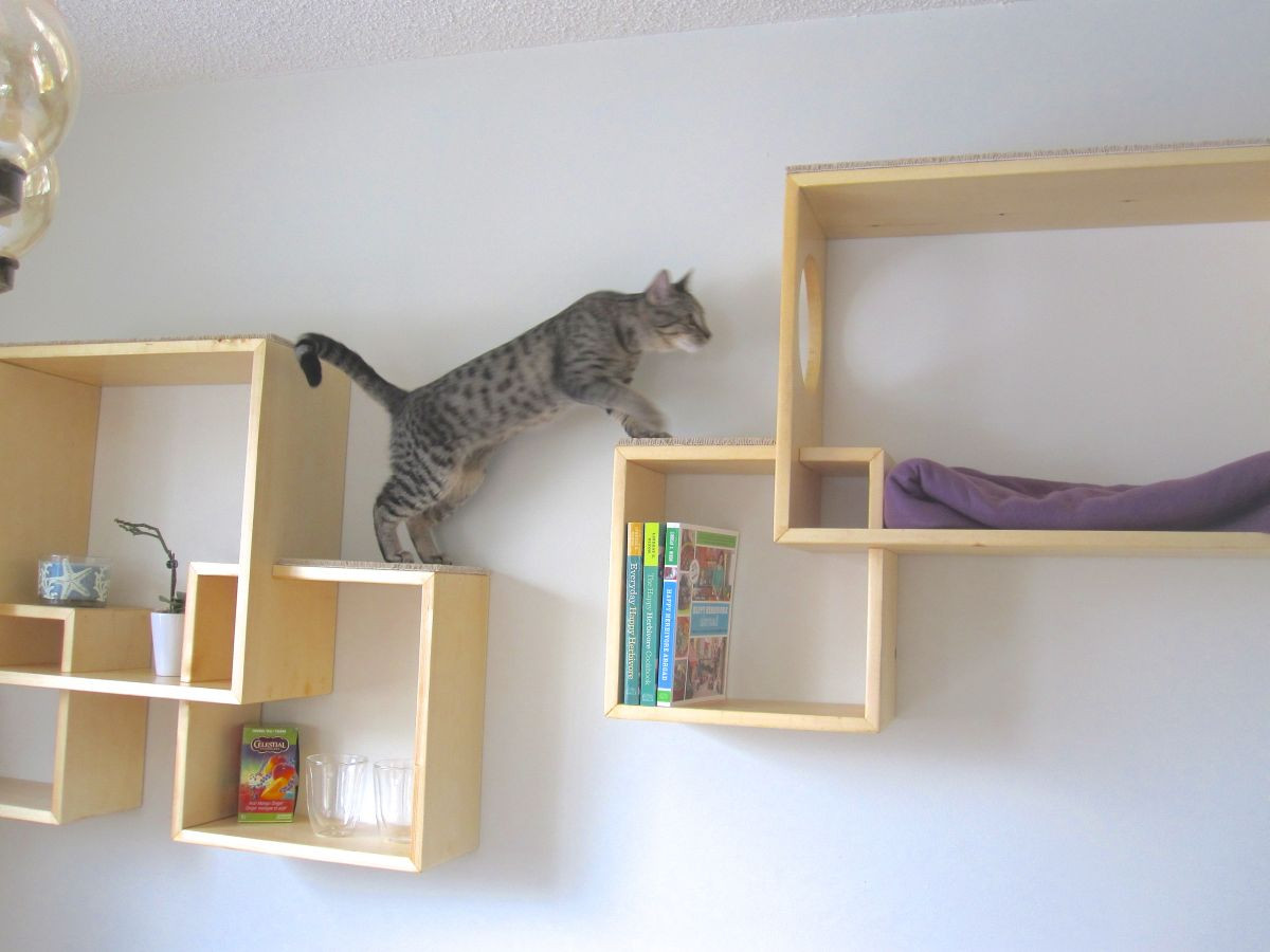 Best ideas about Cat Wall Shelves DIY . Save or Pin Modern Cat Tree Alternatives For Up To Date Pets Now.