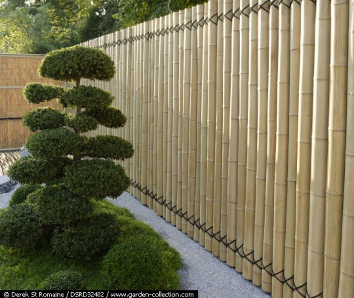 Best ideas about Cheap Fence DIY . Save or Pin Cheap diy privacy fence ideas 34 Wartaku Now.
