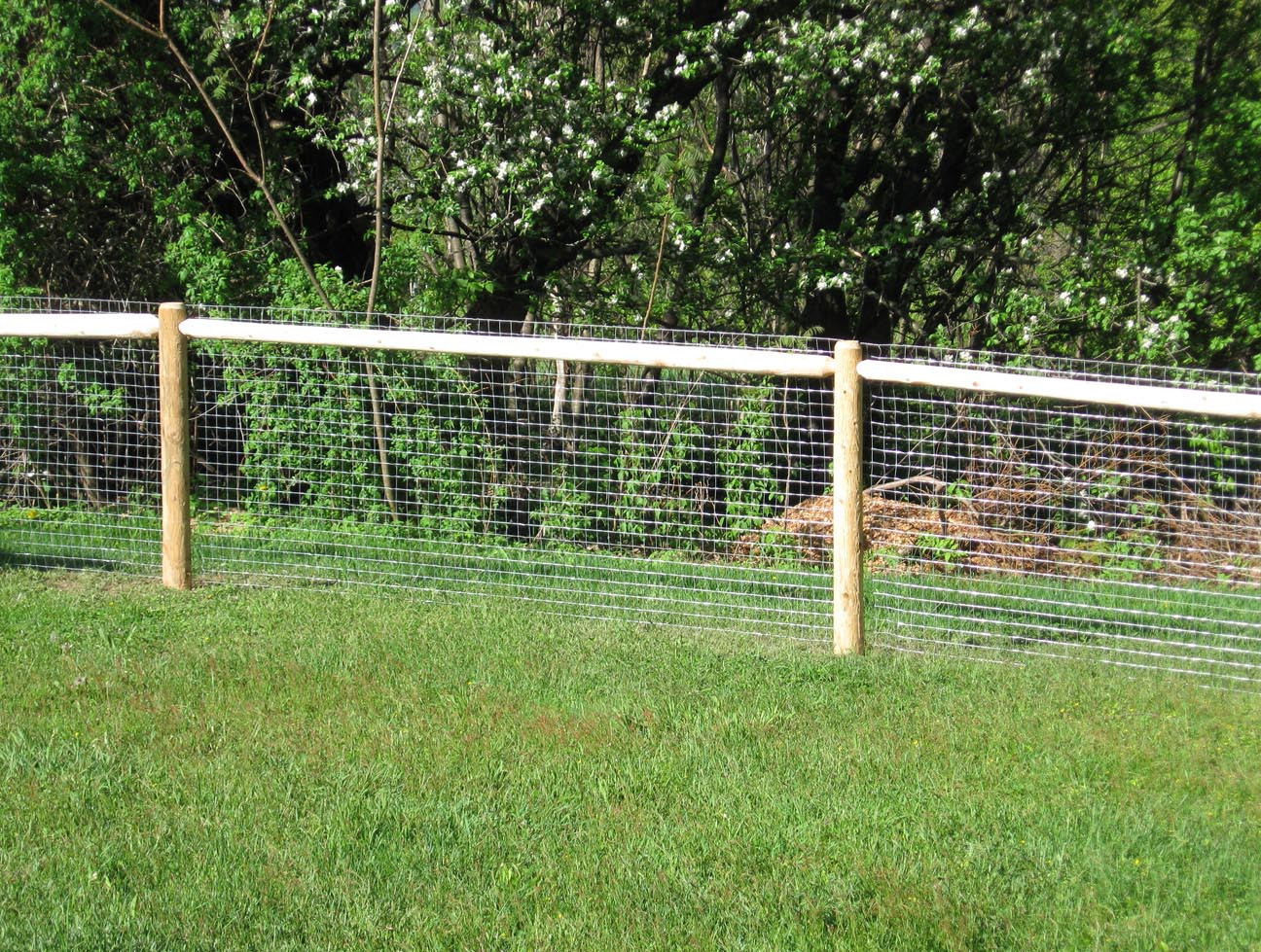 Best ideas about Cheap Fence DIY . Save or Pin Cheap Fence Ideas For Dogs In DIY Reusable And Portable Now.