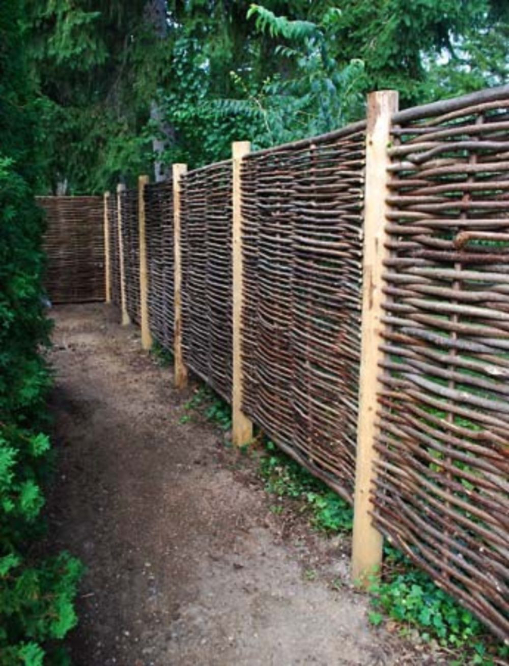 Best ideas about Cheap Fence DIY . Save or Pin Cheap diy privacy fence ideas 52 Wartaku Now.