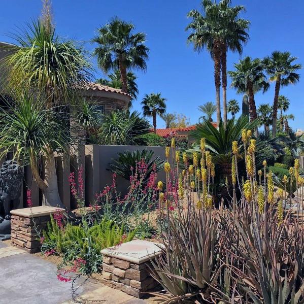Best ideas about Desert Garden Ideas . Save or Pin Top 70 Best Desert Landscaping Ideas Drought Tolerant Plants Now.
