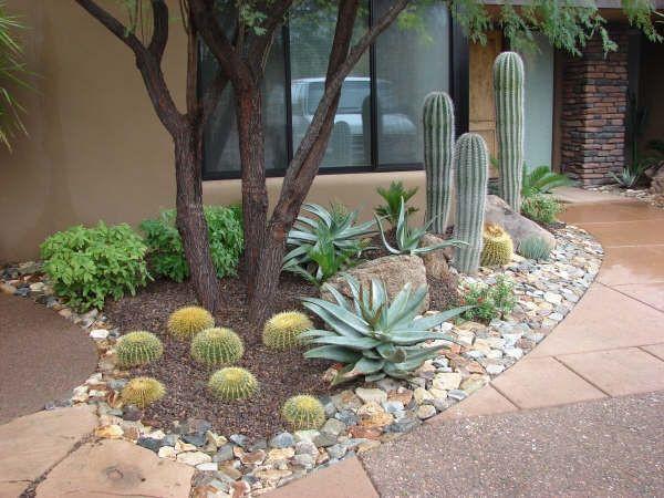 Best ideas about Desert Garden Ideas . Save or Pin 602 best Desert Landscaping images on Pinterest Now.