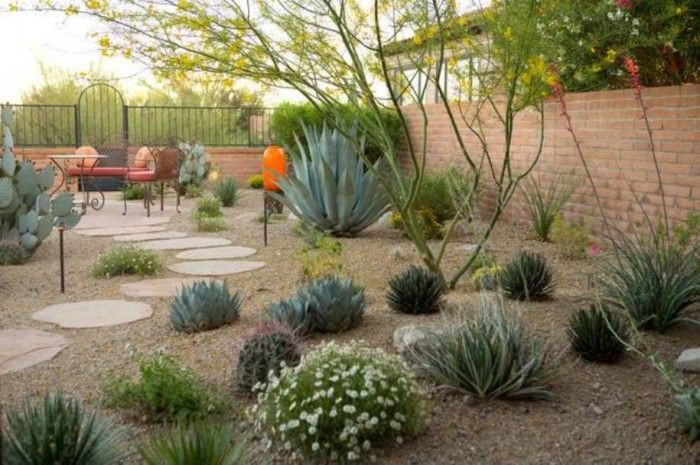 Best ideas about Desert Garden Ideas . Save or Pin Backyard Desert Landscaping Desert Landscaping For Your Now.