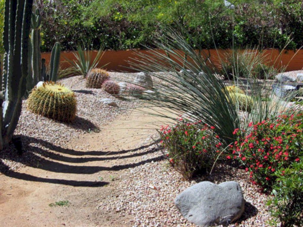 Best ideas about Desert Garden Ideas . Save or Pin 24 Beautiful Desert Garden Design Ideas For Your Backyard Now.