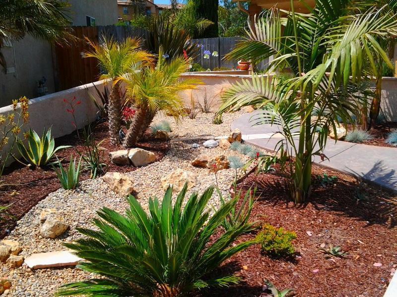 Best ideas about Desert Garden Ideas . Save or Pin Desert Landscaping Ideas to Make Your Backyard Look Now.