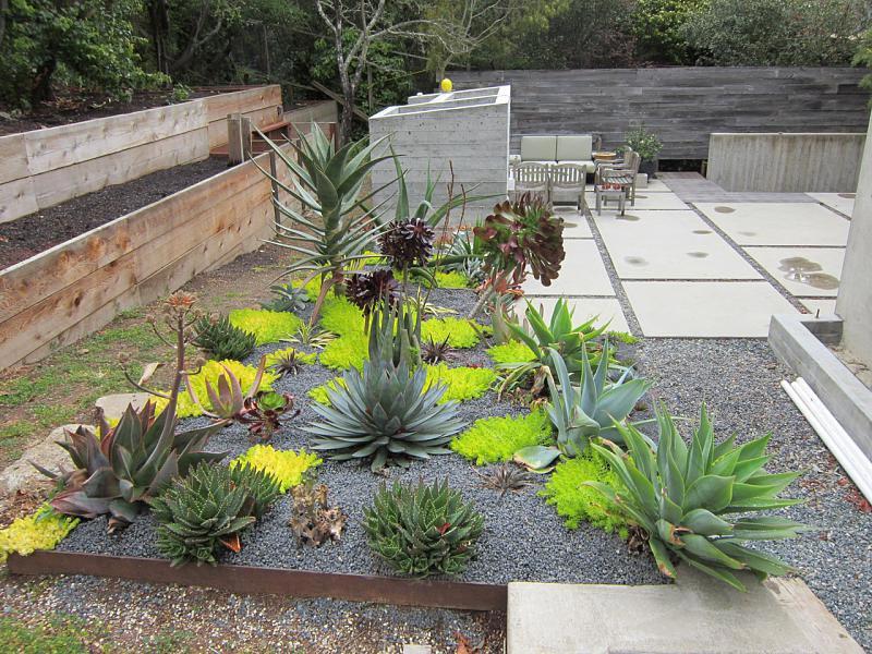Best ideas about Desert Garden Ideas . Save or Pin Desert Landscaping How To Create Fantastic Desert Garden Now.