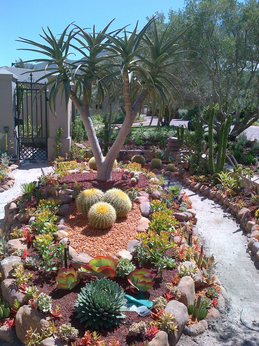 Best ideas about Desert Garden Ideas . Save or Pin Get the Oasis for Your Home with These Amazing Desert Now.