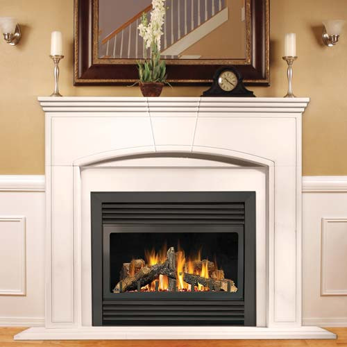 Best ideas about Direct Vent Fireplace . Save or Pin Napoleon GD33NR Direct Rear Vent Gas Fireplace 34 in Now.