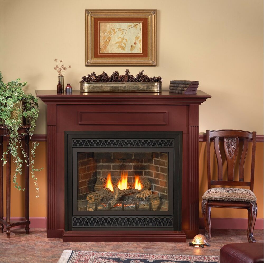 Best ideas about Direct Vent Gas Fireplace . Save or Pin Empire White Mountain Hearth Tahoe Deluxe Direct Vent Gas Now.