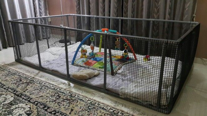 Best ideas about DIY Baby Playpen . Save or Pin DIY Playpen Made from pvc pipes and netting Threw in some Now.