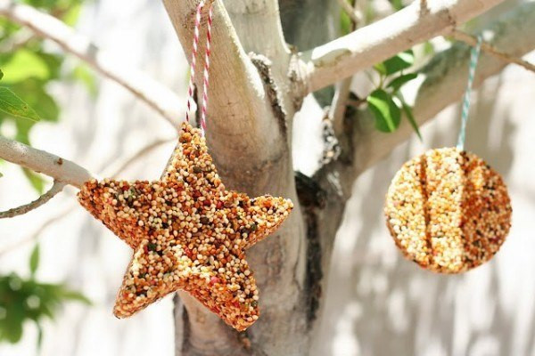 Best ideas about DIY Bird Feeders For Kids . Save or Pin 19 Beautiful DIY Bird Feeders Now.