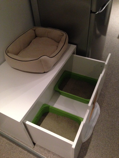 Best ideas about DIY Cat Box . Save or Pin 11 Simple DIY Kitty Litter Boxes And Loos From IKEA Units Now.