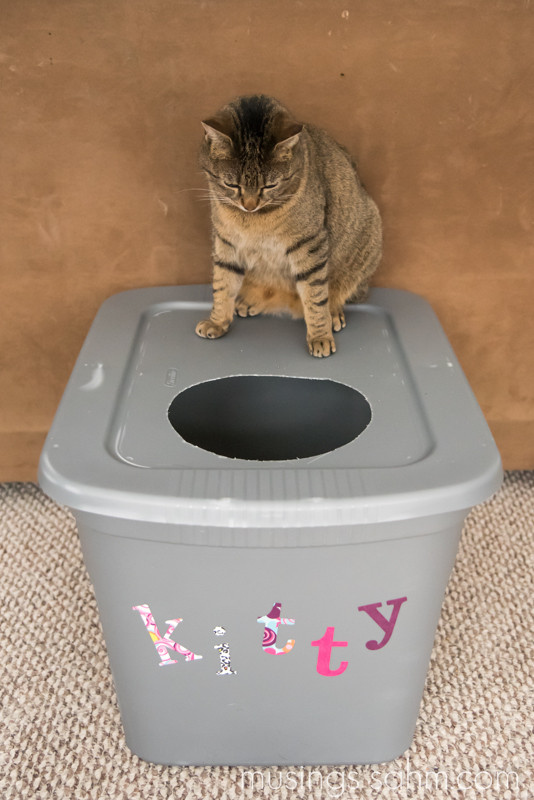 Best ideas about DIY Cat Box . Save or Pin The Original DIY Mess Free Cat Litter Box Living Well Mom Now.