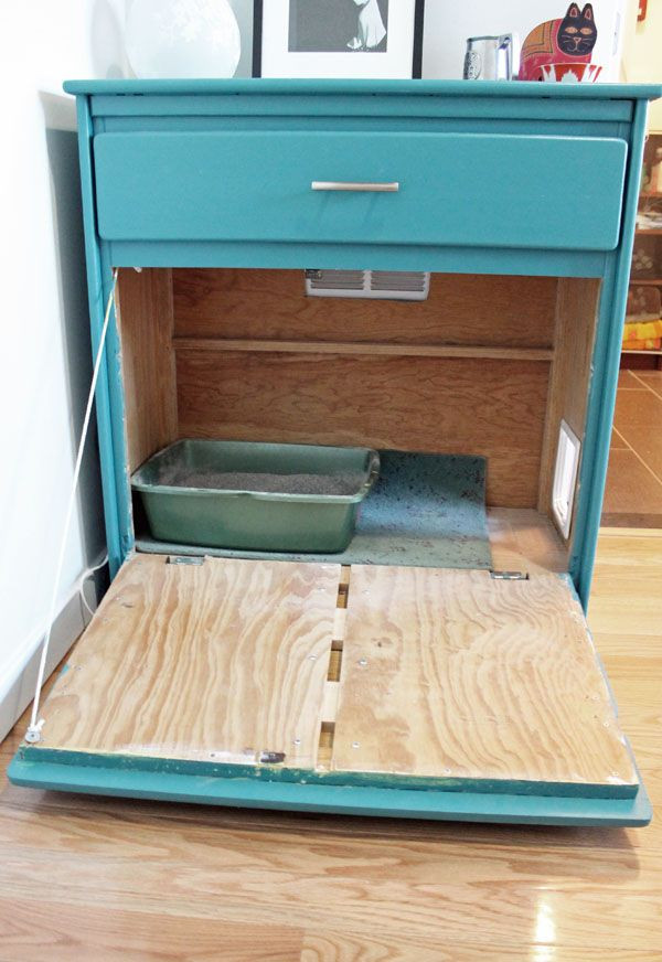 Best ideas about DIY Cat Litter Boxes . Save or Pin Best 25 Hidden litter boxes ideas on Pinterest Now.