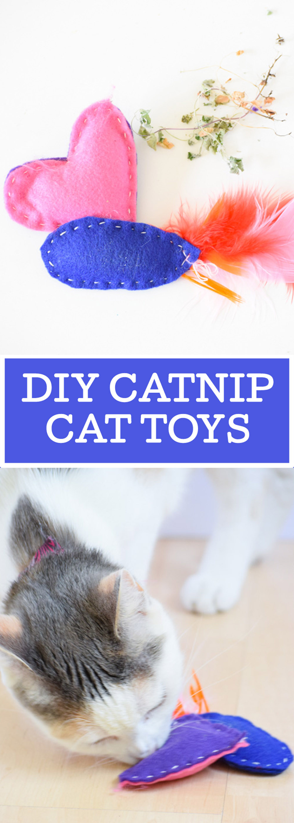 Best ideas about DIY Catnip Toys . Save or Pin DIY Catnip Cat Toys Your Everyday Family Now.