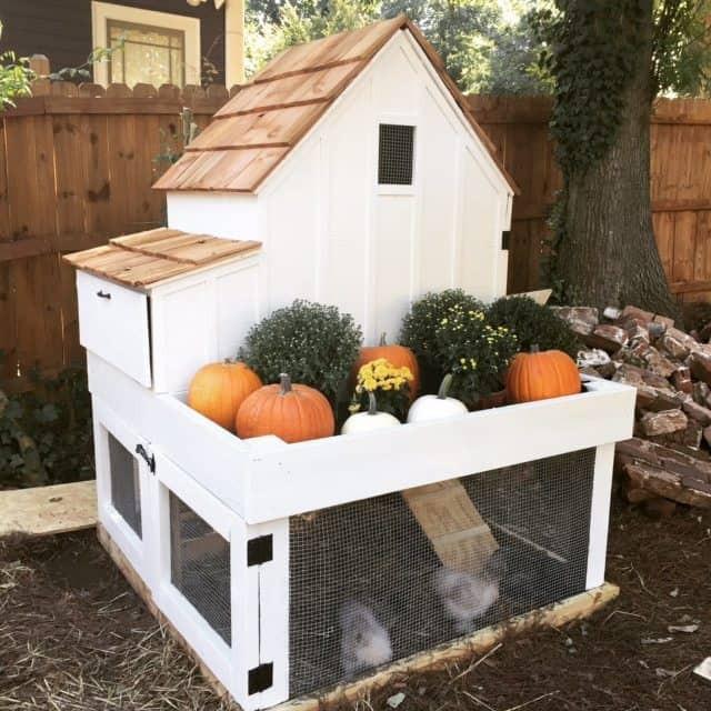 Best ideas about DIY Chicken Coop Plans . Save or Pin 55 DIY Chicken Coop Plans For Free Now.