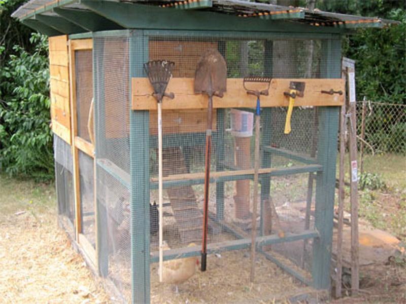 Best ideas about DIY Chicken Coop Plans . Save or Pin Planning & Ideas DIY Chicken Coop Plans Cheap Chicken Now.