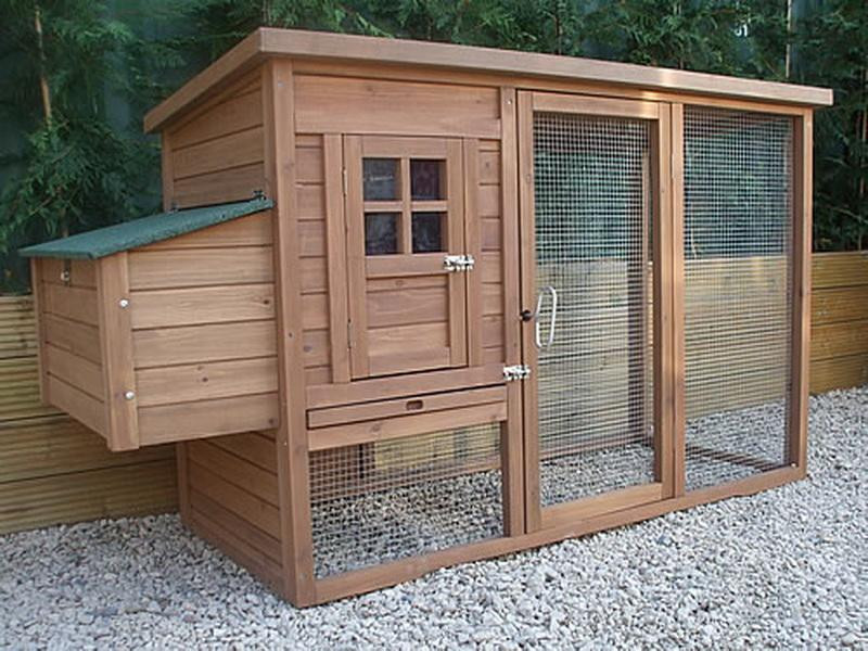 Best ideas about DIY Chicken Coop Plans . Save or Pin Planning & Ideas DIY Chicken Coop Plans How To Build A Now.