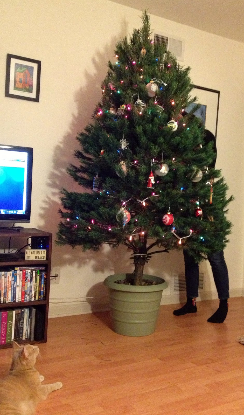 Best ideas about DIY Christmas Tree . Save or Pin The Modern DIY Life DIY Christmas Tree Stand Now.