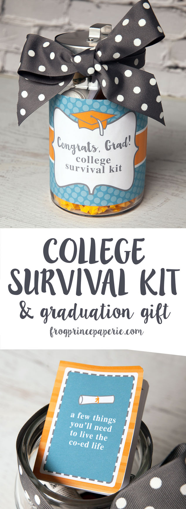 Best ideas about DIY College Survival Kit . Save or Pin College Survival Kit DIY Graduation Gift Frog Prince Paperie Now.