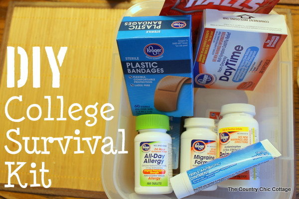 Best ideas about DIY College Survival Kit . Save or Pin DIY College Survival Kit The Country Chic Cottage Now.