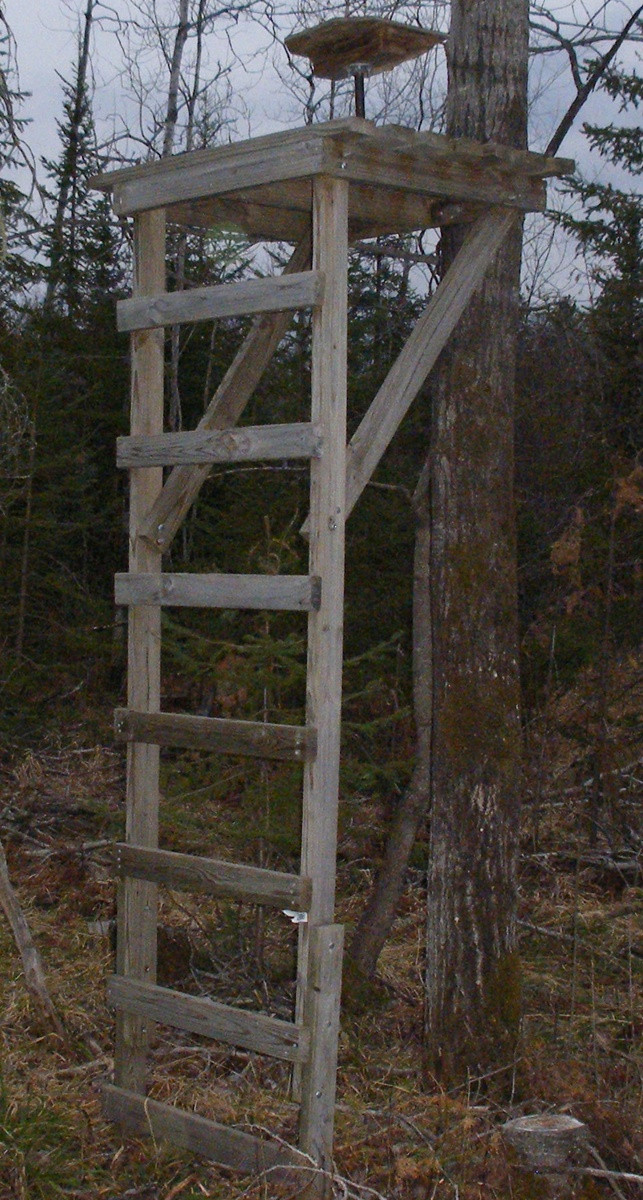 Best ideas about DIY Deer Stand Plans . Save or Pin Here Wood tripod deer stand plans grand woodworking plans Now.
