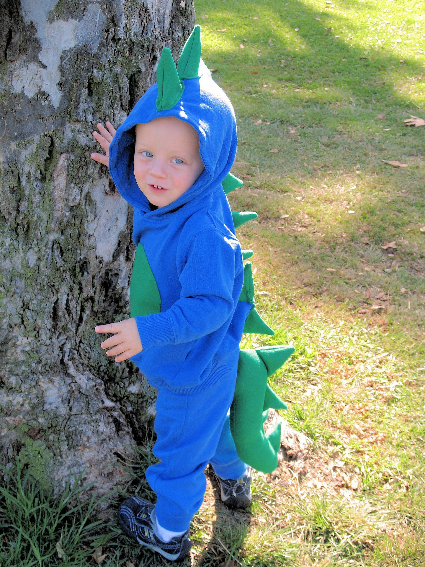 Best ideas about DIY Dinosaur Costume Toddler . Save or Pin Homemade Dinosaur Costume Get hooded sweatshirts and Now.