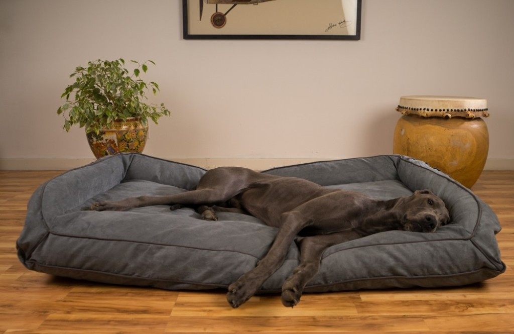 Best ideas about DIY Dog Bed For Large Dogs . Save or Pin Best Dog Beds Ideas Pinterest Dog Bed Diy Now.