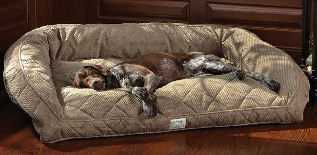 Best ideas about DIY Dog Bed For Large Dogs . Save or Pin Best 25 dog beds ideas on Pinterest Now.
