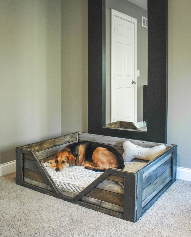Best ideas about DIY Dog Bed Frame . Save or Pin 25 best ideas about Dog beds on Pinterest Now.
