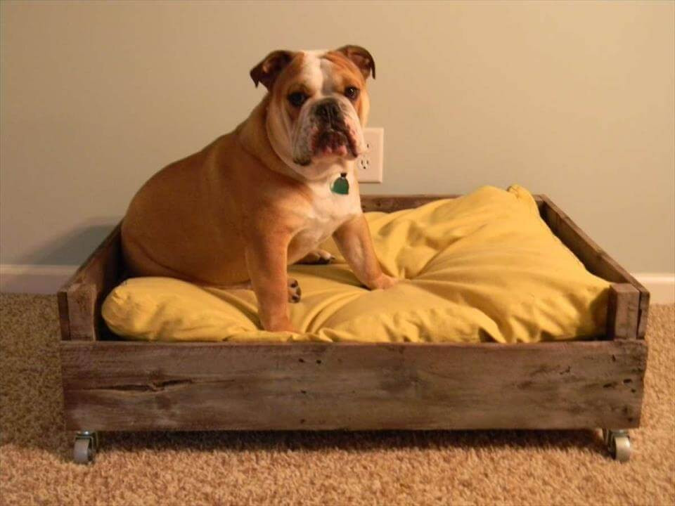 Best ideas about DIY Dog Bed Pallet . Save or Pin 40 DIY Pallet Dog Bed Ideas Don t know which I love more Now.