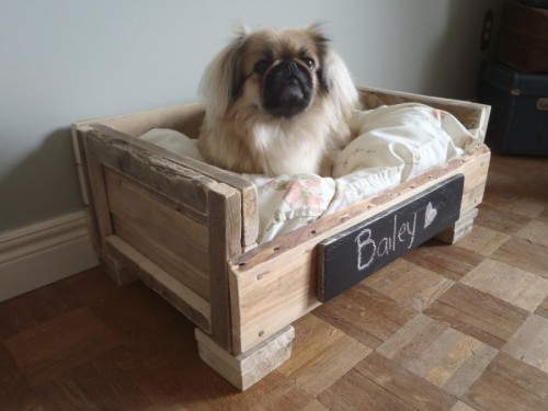 Best ideas about DIY Dog Bed Pallet . Save or Pin 10 DIY Beds For Your Loving Pet Friends Now.