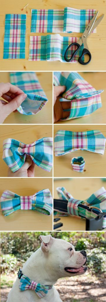 Best ideas about DIY Dog Bow Tie . Save or Pin DIY Dog Collar Bow Tie s and for Now.
