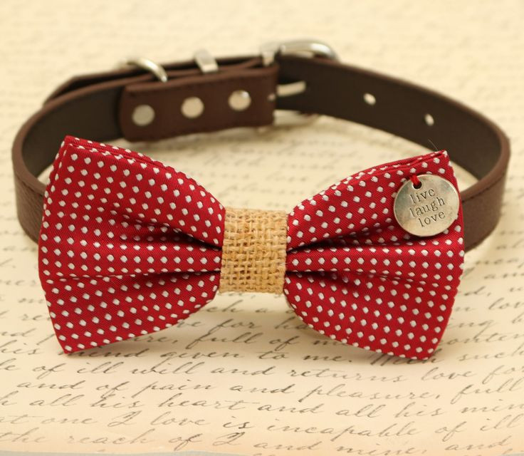 Best ideas about DIY Dog Bow Tie . Save or Pin 25 best ideas about Dog bow ties on Pinterest Now.