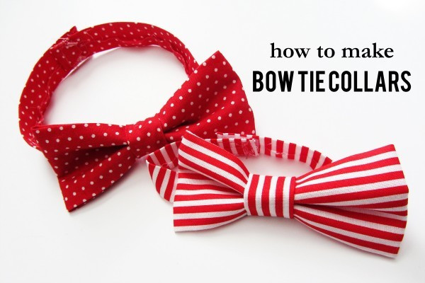 Best ideas about DIY Dog Bow Tie . Save or Pin How To Make AWESOME Bow Tie Collars For Your Dog Now.