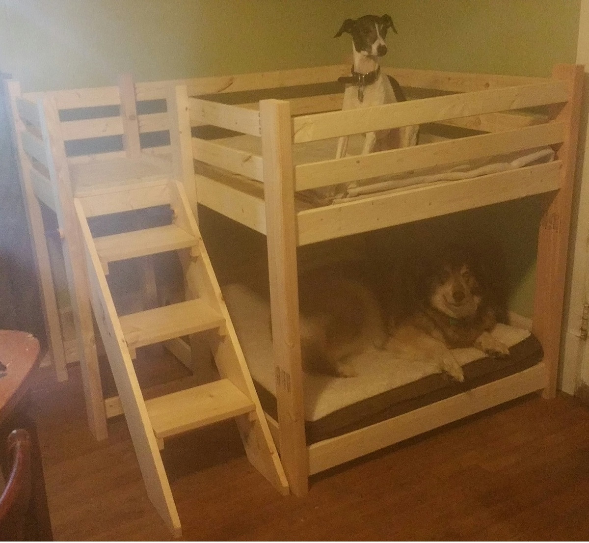 Best ideas about DIY Dog Bunk Bed . Save or Pin Ana White Now.