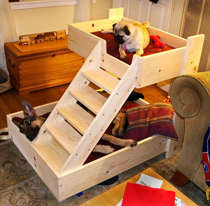Best ideas about DIY Dog Bunk Bed . Save or Pin Best 25 Dog bunk beds ideas on Pinterest Now.