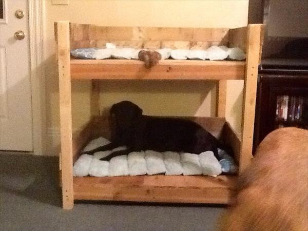 Best ideas about DIY Dog Bunk Bed . Save or Pin DIY Pet Bunk Bed Plans to Build Dog Bed Now.