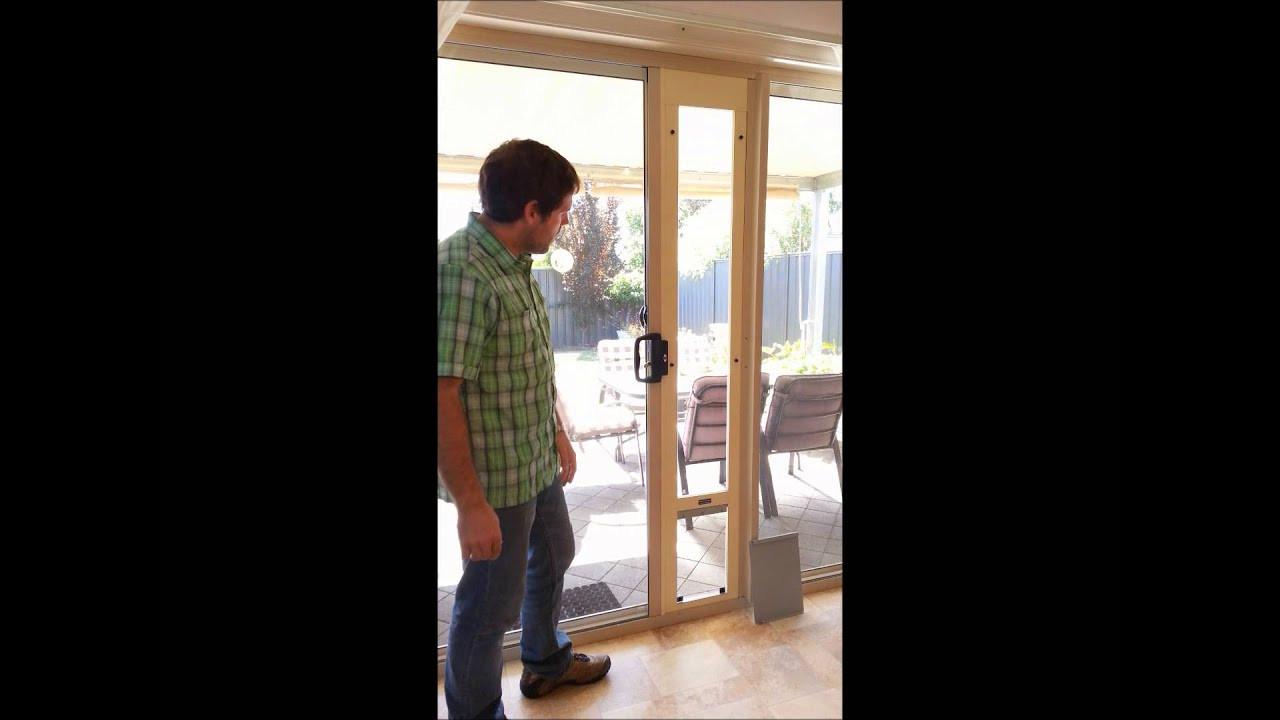 Best ideas about DIY Dog Door Sliding Glass Door . Save or Pin Pet door for sliding glass and screen doors MAXIMUM Now.