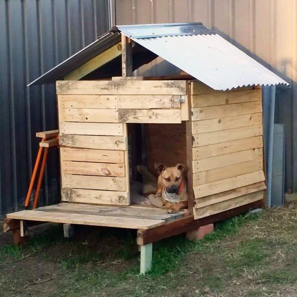 Best ideas about DIY Dog House Ideas . Save or Pin Top 60 Best Dog House Ideas Barkitecture Designs Now.