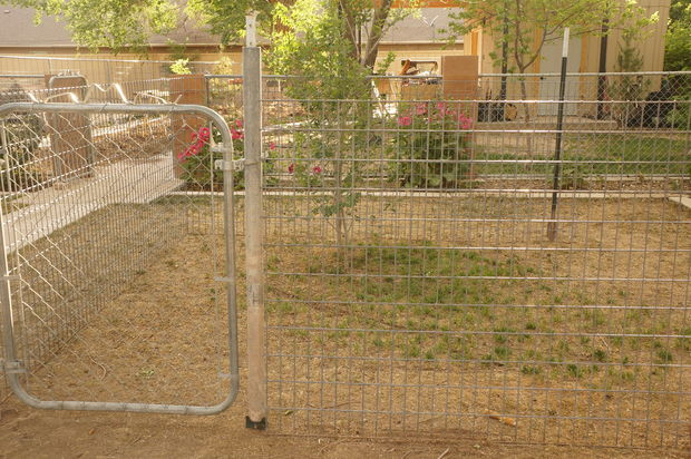 Best ideas about DIY Dog Run . Save or Pin Cheap Easy Dog Run to Build Now.