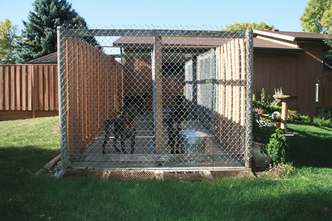Best ideas about DIY Dog Run . Save or Pin How To Build the Perfect Dog Kennel Gun Dog Magazine Now.
