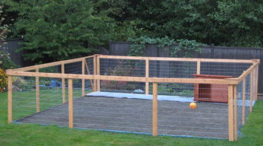 Best ideas about DIY Dog Run . Save or Pin Should I Build or Buy a Dog Kennel Run Now.