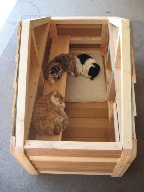 Best ideas about DIY Dog Shelter . Save or Pin 17 Best ideas about Outdoor Cat Houses on Pinterest Now.