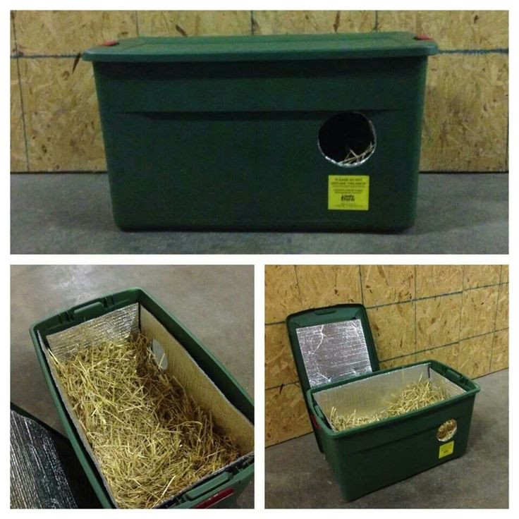 Best ideas about DIY Dog Shelter . Save or Pin Easy DIY Cat Shelter Feral Cats Pinterest Now.