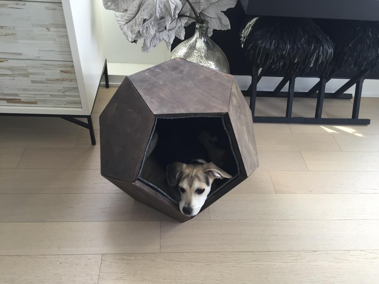 Best ideas about DIY Dog Shelter . Save or Pin 7 DIY Dog Houses to Shelter Your Furry Friends Now.