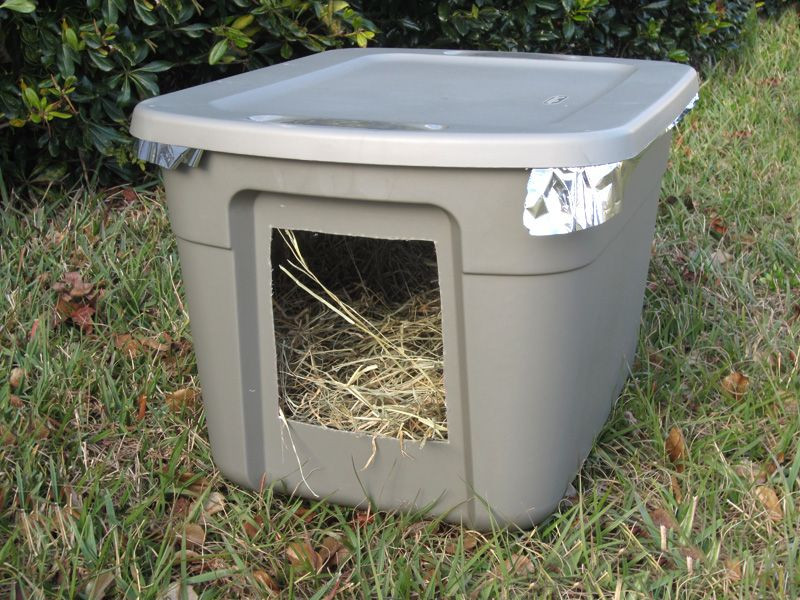 Best ideas about DIY Dog Shelter . Save or Pin Best 25 Feral cats ideas on Pinterest Now.
