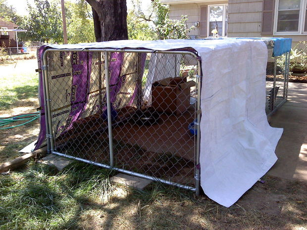 Best ideas about DIY Dog Shelter . Save or Pin DIY Shelter Kennel Cover From Feed Sacks Now.
