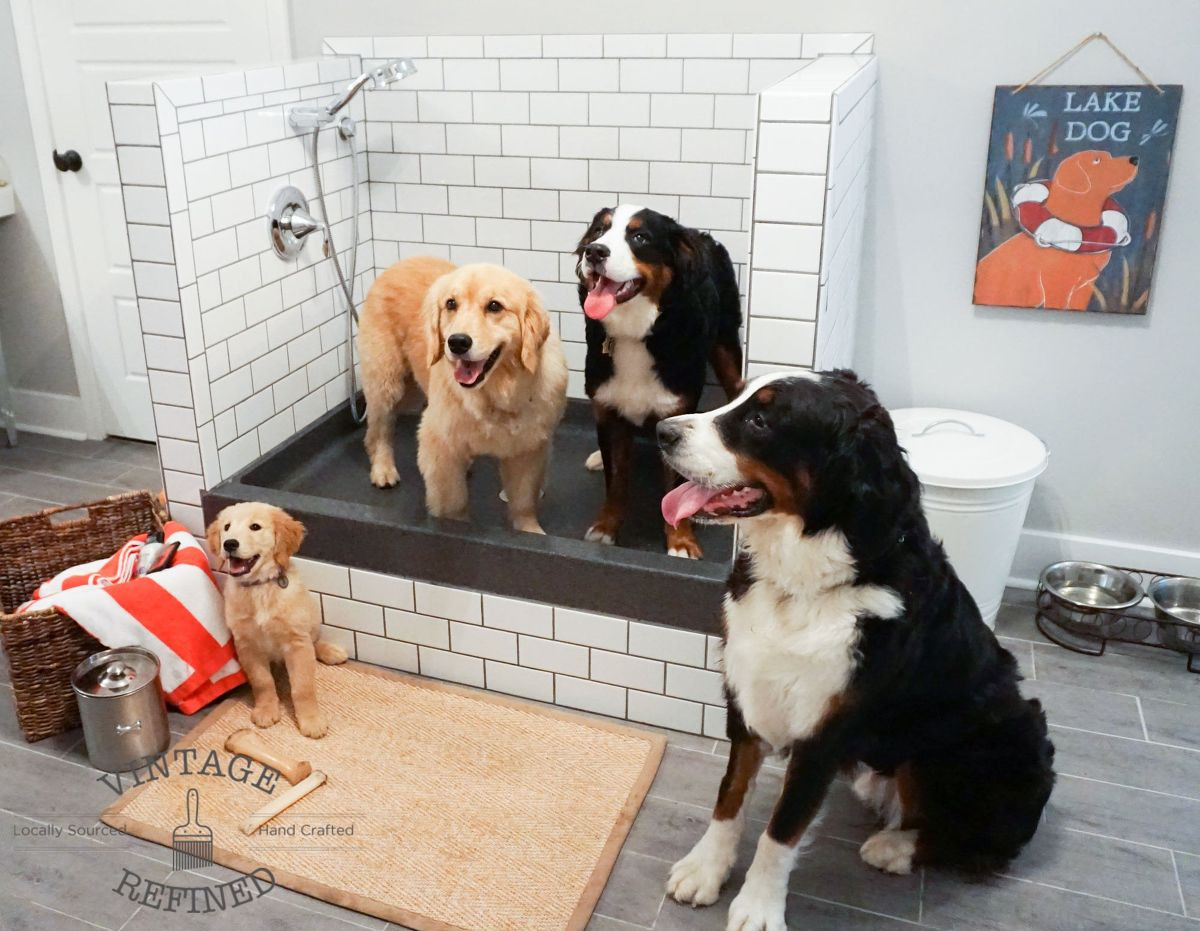 Best ideas about DIY Dog Shower . Save or Pin Hometalk Now.
