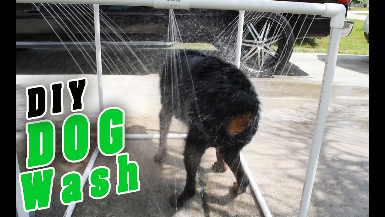 Best ideas about DIY Dog Shower . Save or Pin DIY PVC Outdoor dog Shower Now.